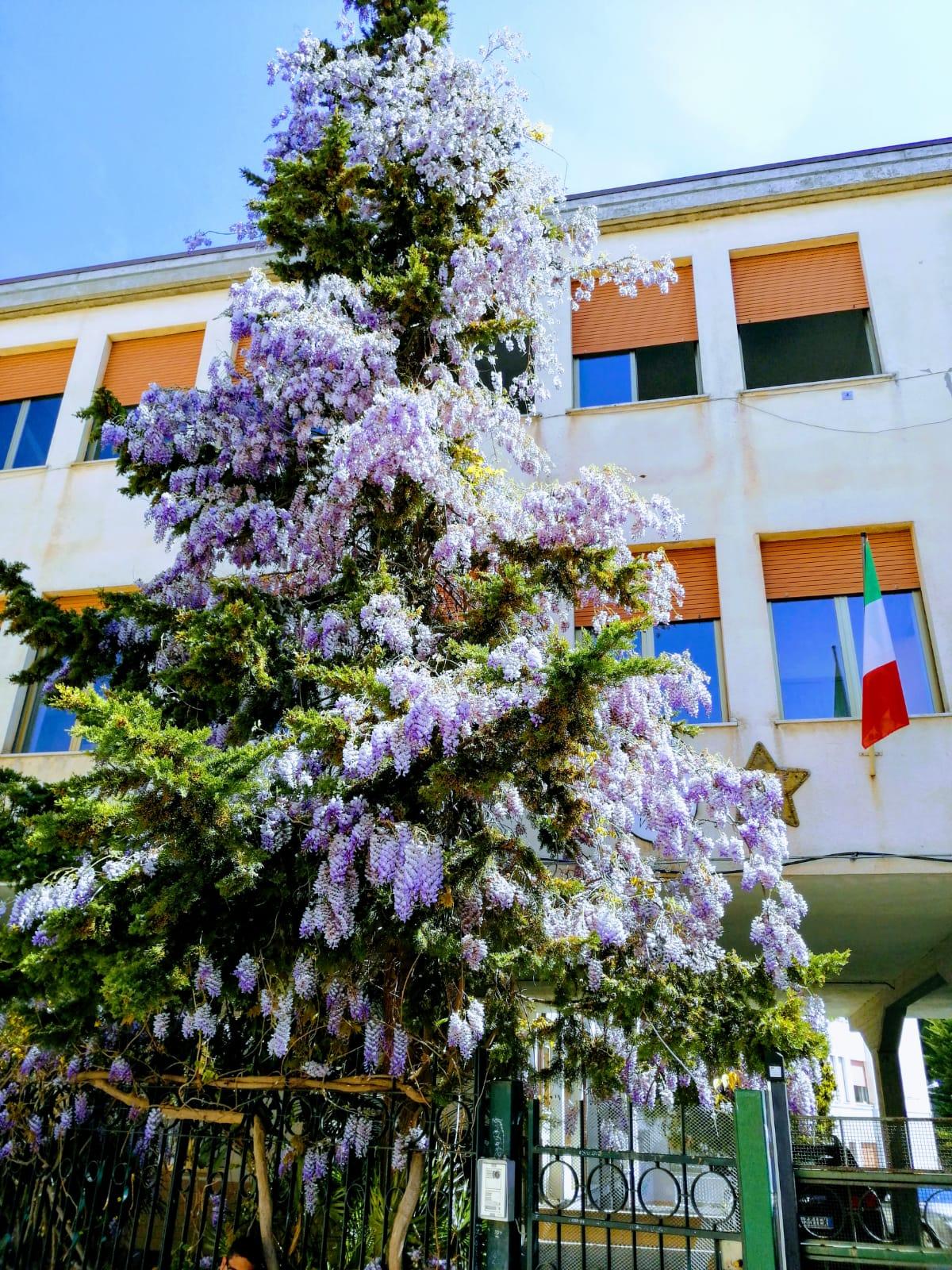 """Assemblea sindacale – orario delle lezioni  """"Paolucci"""" – venerdì 26 aprile 2019 dalle ore 08:00 alle 10:00"""