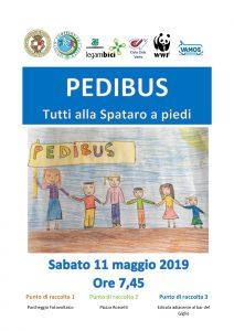 Pedibus : Tutti alla Spataro a piedi. Un bellissimo esempio di mobilità sostenibile